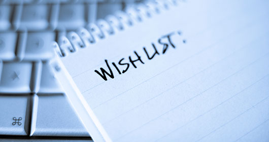 The CEO Wish List: What the CEO Wants From HR